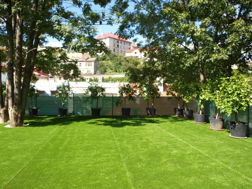 Záhrada 400m2 v B.Štiavnici, trávnik